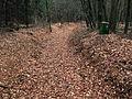 Birkenhain road 2.jpg
