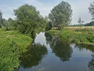 Chelmer and Blackwater Navigation - Image: Blackwater and Chelmer canal 1