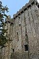 Blarney Castle, Blarney (506719) (27854837674).jpg