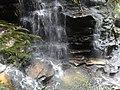 Blue Mountains National Park NSW 2787, Australia - panoramio - noah.odonoghue (12).jpg
