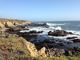 Cambria, California - Bluffs and rocky shoreline at the Fiscalini Ranch Preserve in Cambria