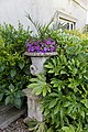 Border shrubs and flower urn Quex House Birchington Kent England.jpg