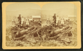Bourdeau Family, Owl's Head Slide, Jefferson, N.H, from Robert N. Dennis collection of stereoscopic views 2.png