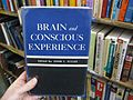 Brain and Conscious Experience - Flickr - brewbooks.jpg