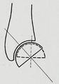 Braus 1921 205.png