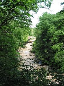 Chippewa Creek in Brecksville Reservation, the largest park by in the  Cleveland Metroparks system.