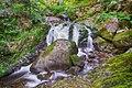 Breitnau - Ravenna Wasserfall an der Großjockenmühle - Bild 1.jpg