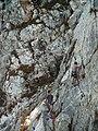 Bretagne Finistere Crozon 2005 190.jpg