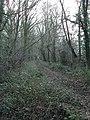 Bridleway at Brick Barns Farm - geograph.org.uk - 643298.jpg
