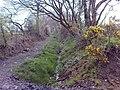 Bridleway to Ffynnon Cemetery - geograph.org.uk - 1255730.jpg