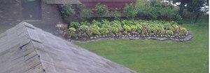 Britannia Yacht Club roof and memorial rose garden.jpg