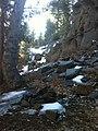 Brownie Creek Toiyabe National Forest USMC Mountain Warfare Training Center 2014 near Coleville, California 96107 - panoramio (7).jpg
