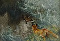 Bruno Liljefors - Stalking fox 1915.jpg
