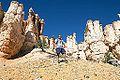Bryce Canyon (15201736180).jpg