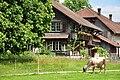 Bubikon - Ritterhaus 2010-06-14 15-07-20.JPG