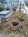 Bucuresti, Romania, Cimitirul Bellu Catolic (Ghizela, cainele Cimitirului). Nov. 2015 (doarme fericita).jpg