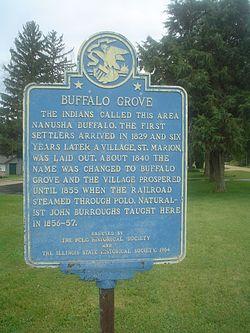 buffalo grove usa