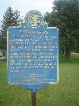 Buffalo Grove, IL Sign 01.JPG
