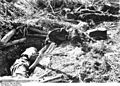Bundesarchiv Bild 183-B22976, Nordafrika, gefallene englische Soldaten.jpg