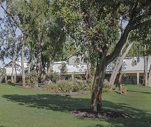 Murdoch University - Image: Bush Court and original campus buildings