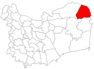 C. A. Rosetti, Tulcea Commune in Tulcea, Romania