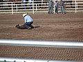 CFD Tie-down roping Derrick Elliot Traylor.jpg