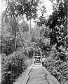 COLLECTIE TROPENMUSEUM Een auto rijdt over een kabelbrug in Moearalaboeh Westkust van Sumatra TMnr 10007601.jpg