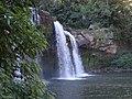 Cachoeira do Rio Branco do Ivaí - PR - panoramio (1).jpg