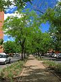 Calle diagonal.jpg