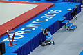 Camera in action 2015 Pan Am Games.jpg