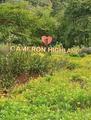 Cameron Highlands Pahang Malaysia.png