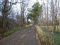 Camino - panoramio (7).jpg
