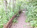 Camley Street bark path willow fence 0969.JPG