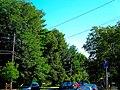 Capital Avenue - panoramio.jpg