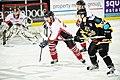 Cardiff Devils v Bracknell Hornets-51 (8193813113).jpg