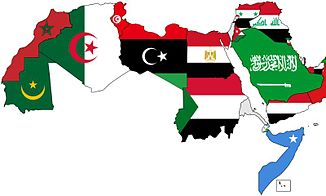 Mauritanie: un sommet de la Ligue arabe en demi-teinte - RFI