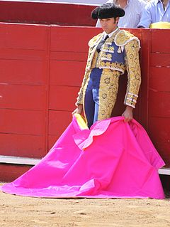 Cayetano Rivera Ordóñez Spanish bullfighter