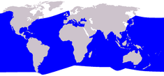 Cetacea range map Cuvier's Beaked Whale.png