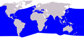 Description de l'image  Cetacea range map Cuvier's Beaked Whale.png.