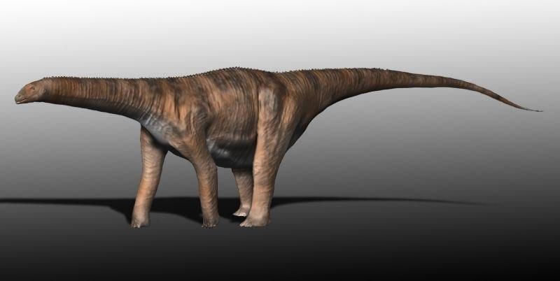 Cetiosaurus BW