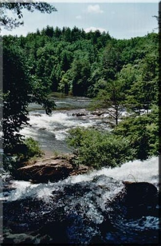Chattooga River - Chattooga River near Dick's Creek Falls