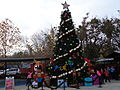 Christmas tree (main) 2015, Wild Adventures.JPG