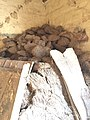 Chullah, Dried cotton plants, Cow dung cakes 14 18 45 329000.jpeg