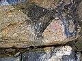 Clast-rich impact pseudotachylite (Sudbury Breccia, Paleoproterozoic, 1.85 Ga; Crab Lake South roadcut, south-southeast of Cartier, Ontario, Canada) 10 (46818331725).jpg