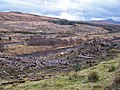 Clear fell in the glen - geograph.org.uk - 1170546.jpg
