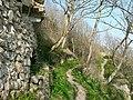 Clifftop footpath to Trwyn y Witch, Dunraven. - geograph.org.uk - 1212702.jpg
