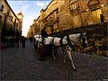 Coche de caballos en Córdoba.jpg