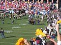 Colorado Ralphie IV Nebraska 2005.jpg
