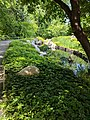 Como Park Zoo and Conservatory - 56.jpg