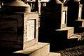 Congressional Cemetery (5).jpg